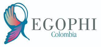 Grupo de expertos en Fisioterapia Oncológica, Cuidados Paliativos y VIH (EGOPHI) de ASCOFI